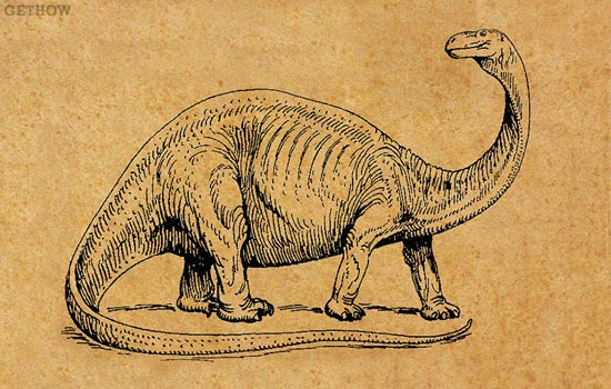 The Top 10 Heaviest Dinosaurs Ever Discovered