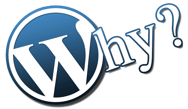 Why Are WordPress Websites Chosen?
